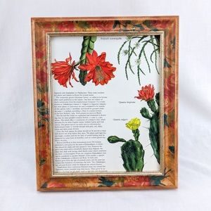 Vintage Framed Botanical Print - Cactus Book Text
